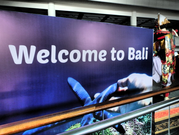 why you should visit bali theguytravel